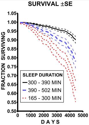 Pourquoi le sommeil est il aussi important