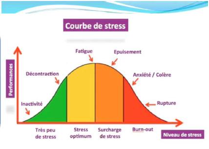 Tout savoir sur le stress